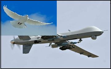 dove_or_drone